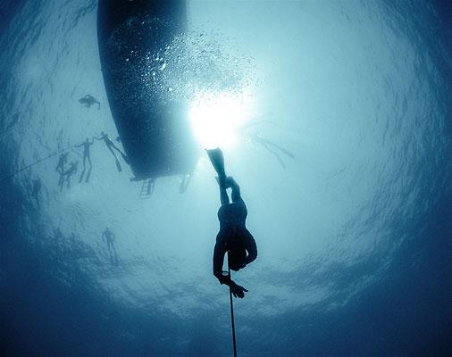 Diver X