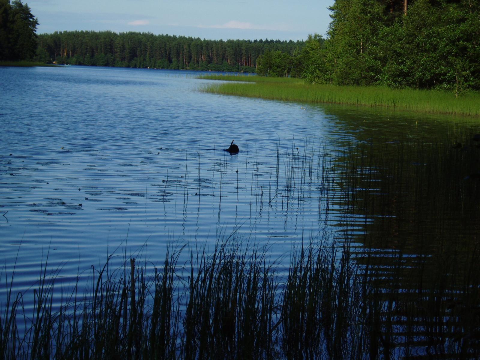 26.07.2008(отдых на озере Уловое) 012.jpg