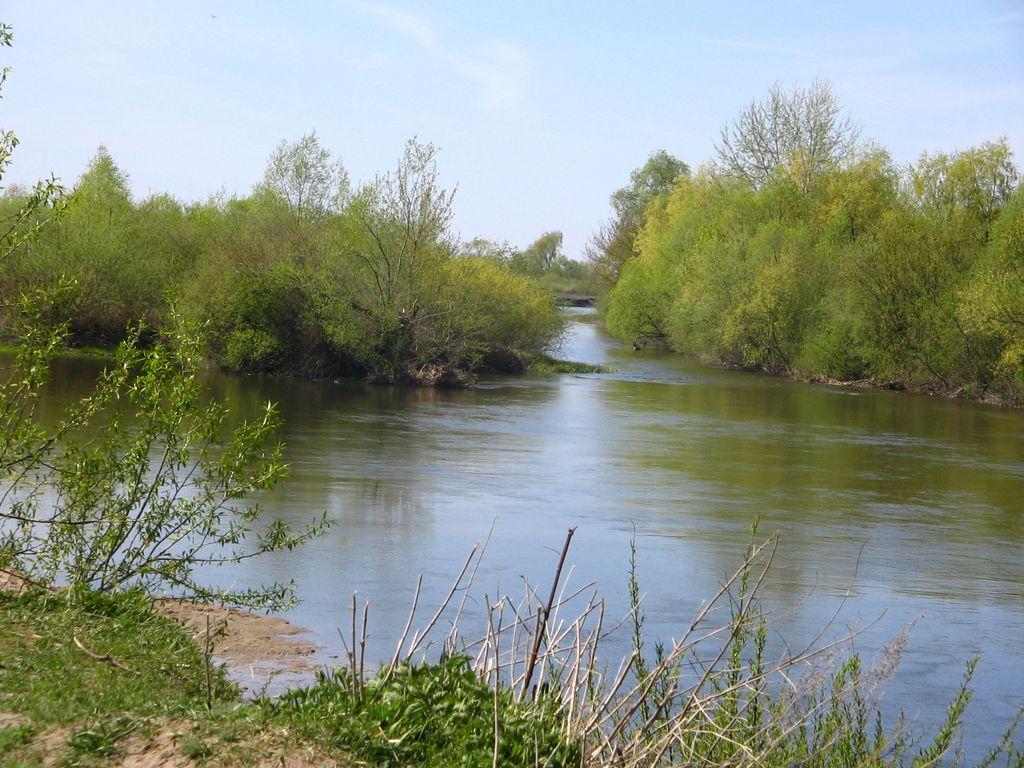 Река Горынь бывает удивляет:)