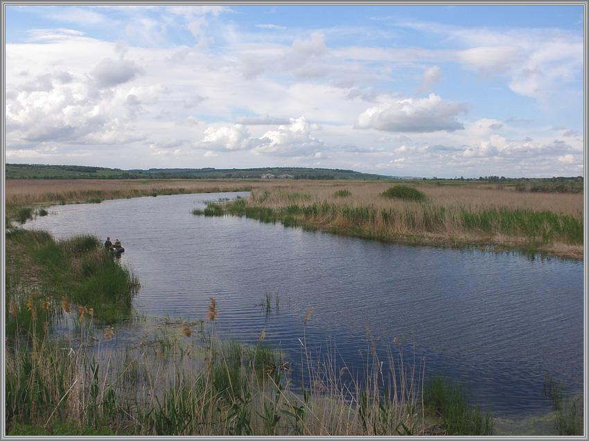 """Рыбная"" река..."