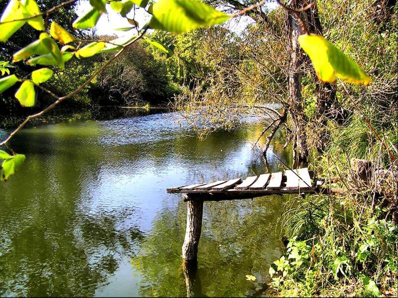 Интересная река