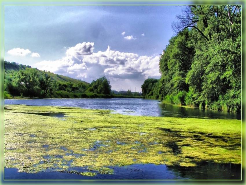 Зеленый Айдар (2)