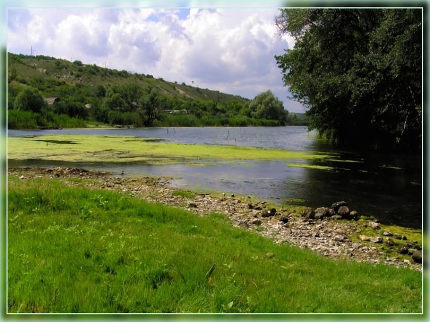 Зеленый Айдар (1)