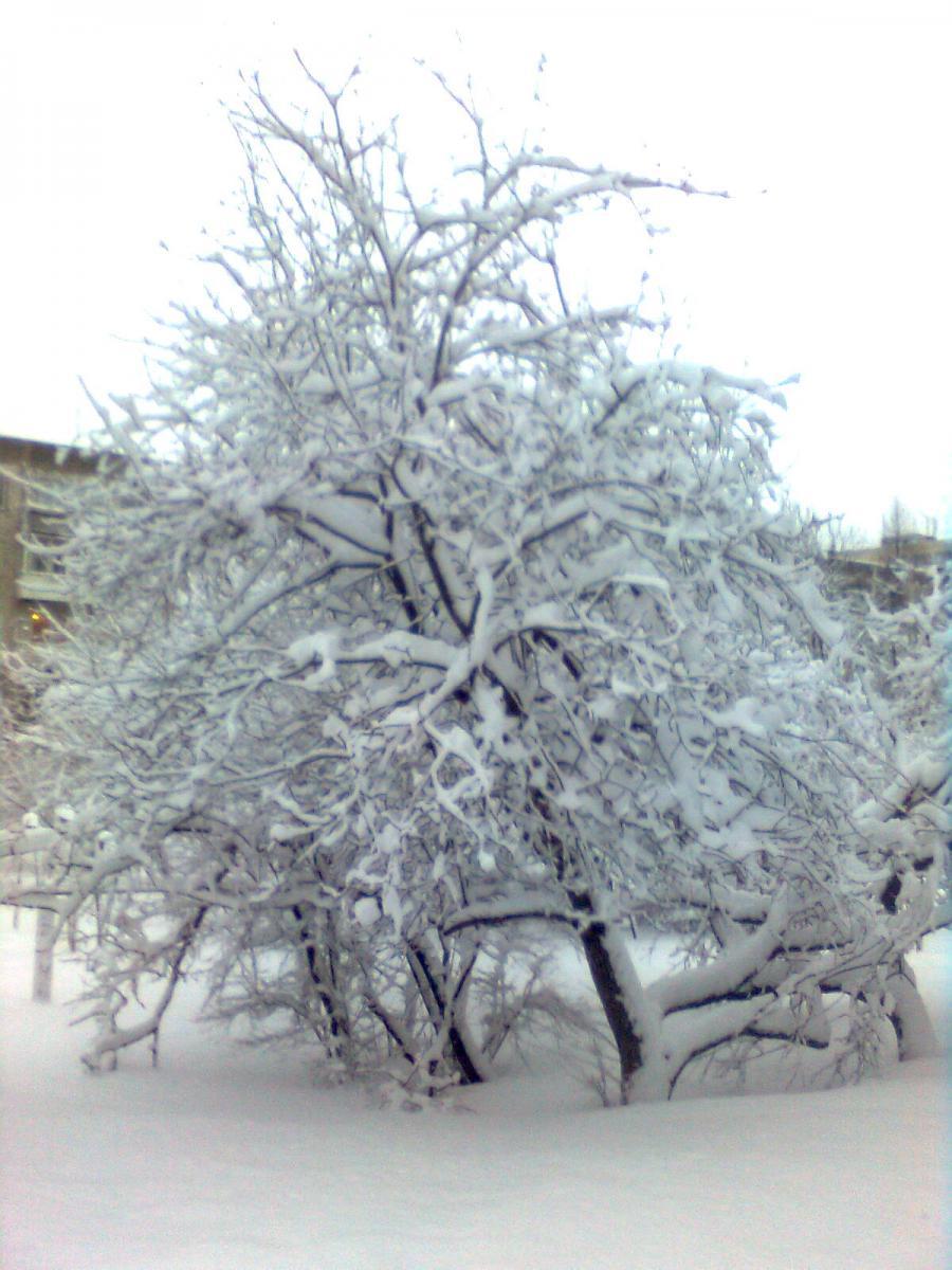 Весна в Смоленске