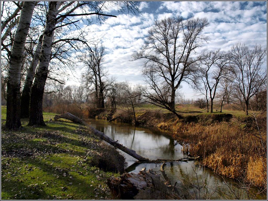 р. Боровая, недалеко от г. Северодонецка, Украина