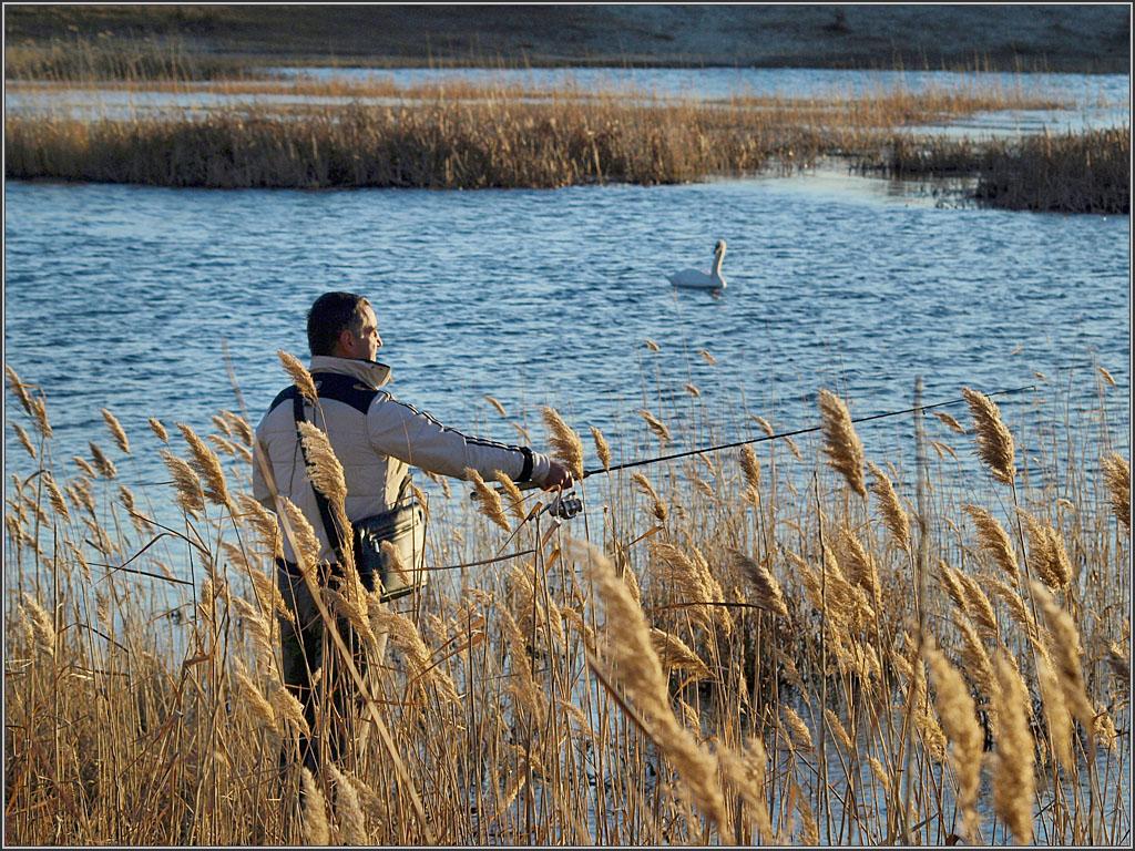 Украина, Луганская обл, озеро Чистое в черте города Северодонецк.