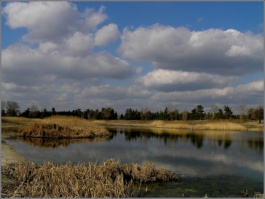 Украина, Луганская обл, озеро Парковое в черте города Северодонецк.