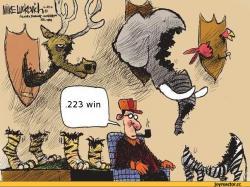 охотник-223-win-847853.jpeg